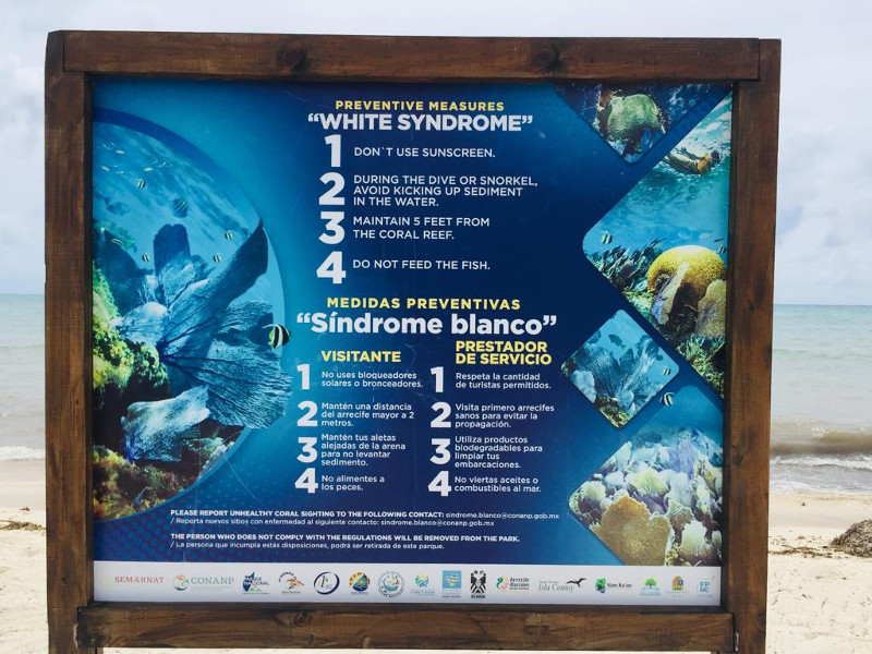 White Syndrome sign